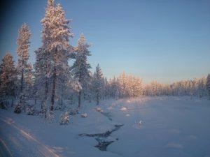 Lappland (11)