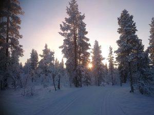 Lappland (12)
