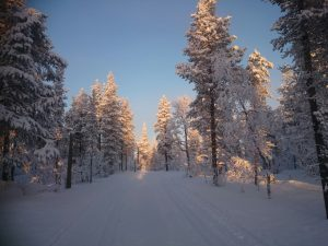 Lappland (13)