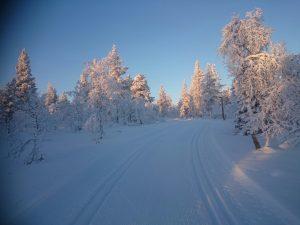 Lappland (14)
