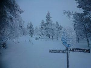Lappland (25)