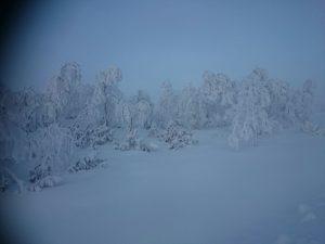 Lappland (29)