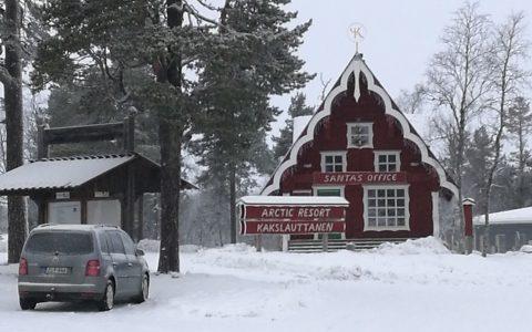 4 Rentiere vom Langlauf-Team in Lappland
