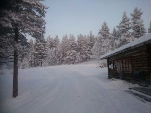 Lappland (35)