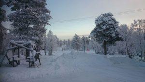 Lappland (40)