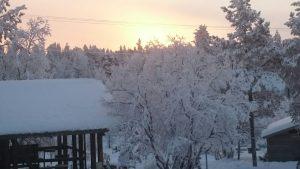 Lappland (42)